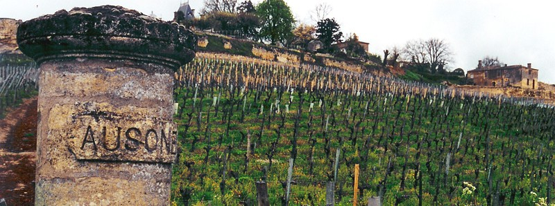 chateau-ausone-vineyard